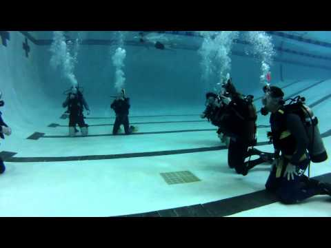 OPEN WATER DIVE POOL TRAINING -SQUALUS MARINE DIVERS