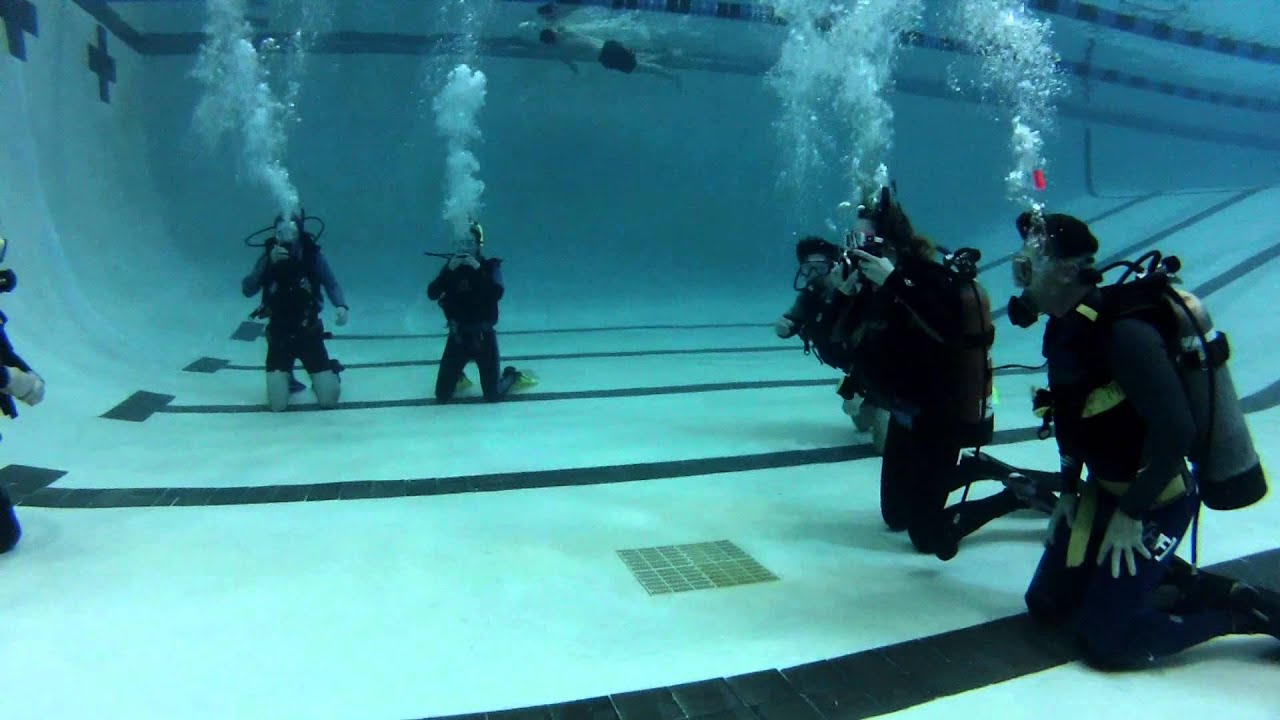 Training For Dives In The Water
