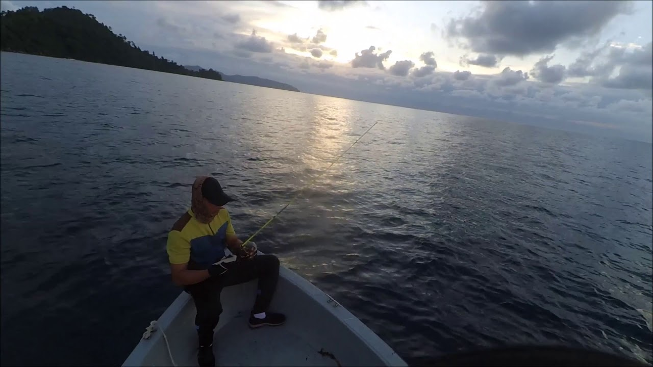 Ajiking Safari Jig Rod & Eupro Tiger 5000 Reel Test Review (Yellowfin Tuna)