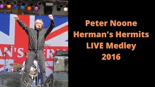 Peter Noone Herman