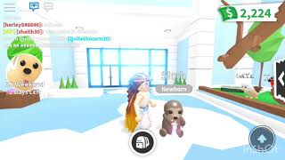 (Roblox Adopt Me) New Update: Sloth Ultra Rare Pet and Pet Age Fast 😱❤️
