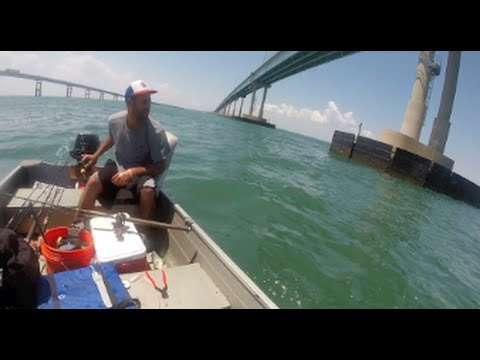 FIshing The Chesapeake Bay Bridge Tunnel 8/1/15 Flounder, Shark, But No Cobia