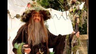 Baixar Gandalf the Grey Gandalf the White the Brown Wizard
