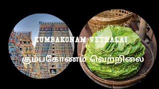 கும்பகோணம் கொழுந்து வெத்தல | KUMBAKONAM VETHALAI | கும்பகோணம் கொழுந்து வெத்தலை
