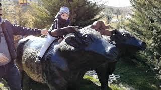 Yusuf miraçla parka ve pikniğe geldik. Maket hayvanları gördük