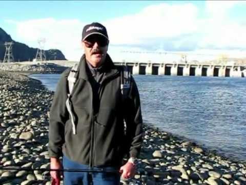 Upper Columbia Steelhead Pateros To Rocky Reach