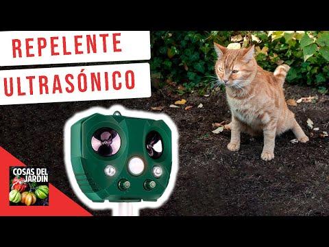 REPELENTE ULTRASONICO DE ANIMALES. FUNCIONARÁ CON EL GATO?