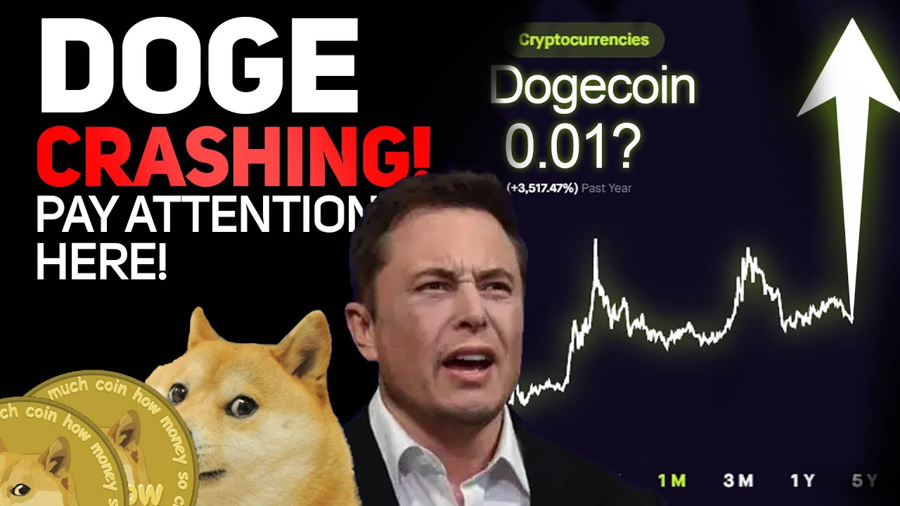 ELON JUST CAUSED A MAJOR DOGECOIN CRASH (HERES WHAT ...