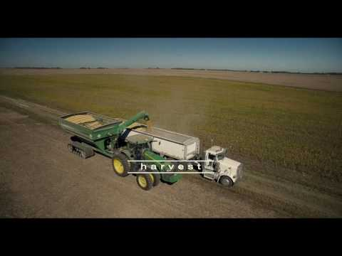 Bryant Agricultural Enterprise - Promotional Video