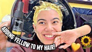 Adding YELLOW To My Hair!💛🌻✨