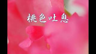 作詞: 康珍化 作曲: 佐藤 隆 1984年5月21日発売.