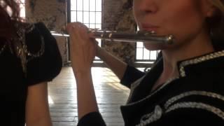 Шоу-оркестр «Русский Стиль» — Benny Benassi, Satisfaction