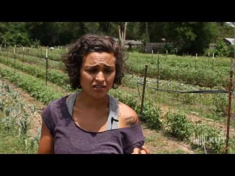 First Person: Young Organic Farmer