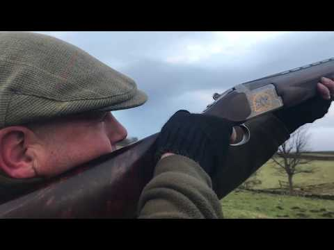 Pheasant Shooting in The Yorkshire Dales 16th December 2017