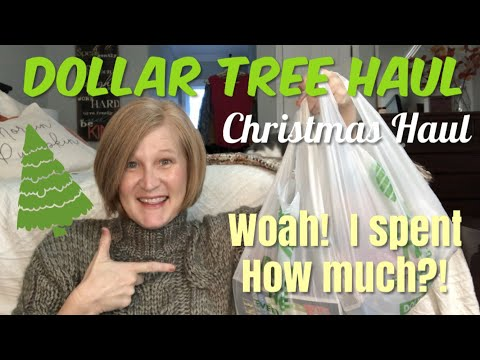 Huge Dollar Tree Haul   What's NEW at the DOLLAR STORE? November 2019
