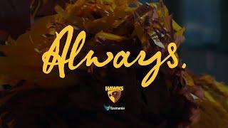Hawks - Always Tasmania