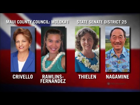INSIGHTS ON PBS HAWAI'I: Maui County Council – Moloka'i / State Senate District 25