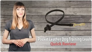 Professional Pocket Leather Dog Training Leash - Quick Review