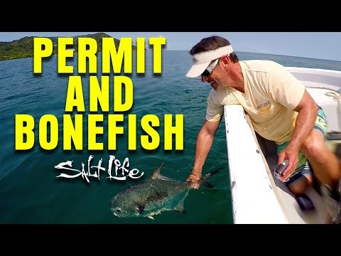 Bone Fishing In Roatan | Salt Life