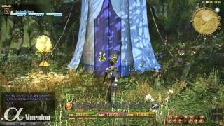 FINAL FANTASY XIV: A Realm Reborn -- The Black Shroud, Part 2 (Alpha)