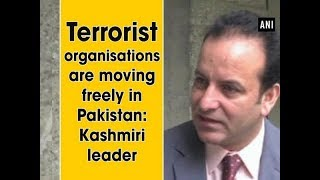 Terrorist organizations are moving freely in Pakistan: Kashmiri leader  - World News