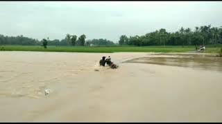 Download Video Nekat Melintas,Bapak ini Terjang banjir Malah Jatuh Terseret Arus MP3 3GP MP4