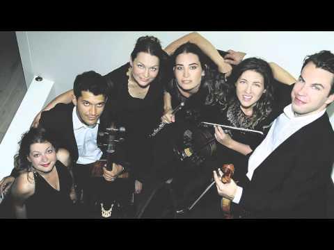 Ana de la Vega, Daniel Röhn, Ruth Gibson, Ashok Klouda - Mozart Flute Quartet in D K285, ii