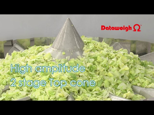 Salad/Salat, Multihead Weigher/Mehrkopfwaage OMEGA ADW-O-1214S, Yamato Scale