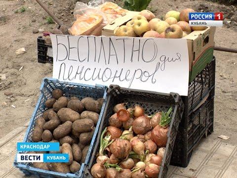 В Краснодаре пенсионерам бесплатно раздают продукты и хлеб