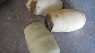 SUPER FAST EASY Potato Peeler with a Drill and Spade Bit FUN Free How to Peel a Potato Quickly