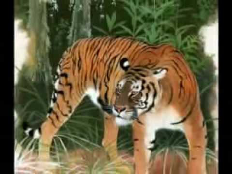 Extinct tiger subspecies (with music)