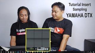 Cara Memasukkan Suara/Sampling ke Midi Yamaha DTX multi 12 bersama Beny Sonata