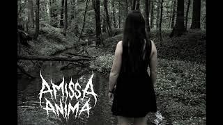 Amissa Anima Kill The Light
