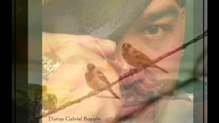 """IF I COULD """"El Condor Pasa"""" (Simon & Garfunkel) Darius Gabriel Bugarin Cover"""