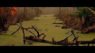 Ужасы !!! Мутная река