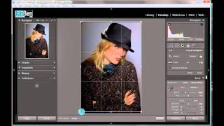 Lightroom tip: Histogram and the crop tool