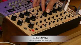 Industrial Percussion with Moog DFAM
