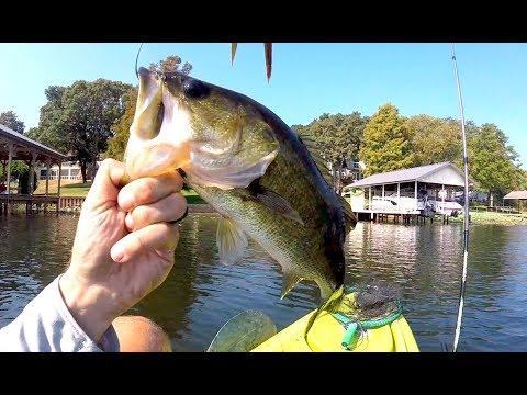 KAYAK BASS FISHING | Lake Athens Texas