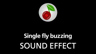 Single fly buzzing, sound effect