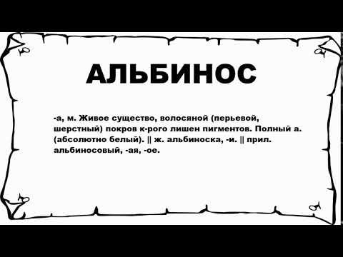 АЛЬБИНОС - что это такое? значение и описание
