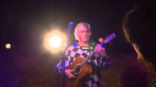 Watch Robyn Hitchcock Agony Of Pleasure video