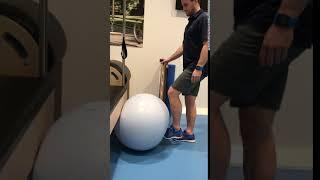 Gym Ball Leg Ext ISO