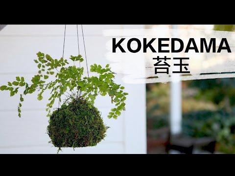 How to Make Kokedama // Garden Answer