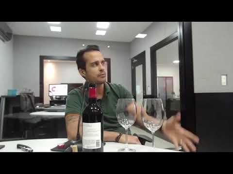 Negócios do Vinho com Diogo Wendling (14/02/2019)