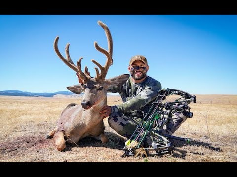 CHAD MENDES' OREGON MULE DEER HUNT: ARCHERY SPOT AND STALK