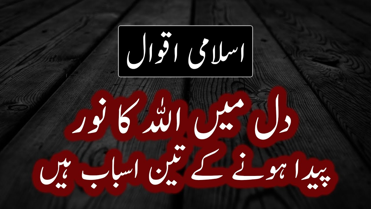 Best Islamic Quotes That Will Make You Cry Part 20 | Life Quotes | Beautiful Quotes in Urdu