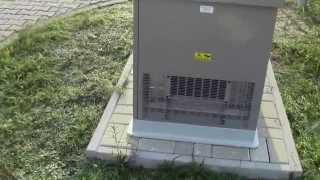 Generatory gazowe, Generator prądu na gaz ziemny lub LPG