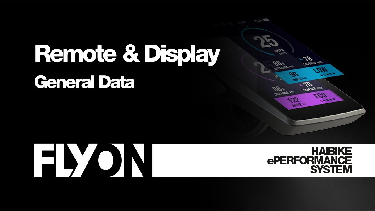 FLYON ePerformance System - General data