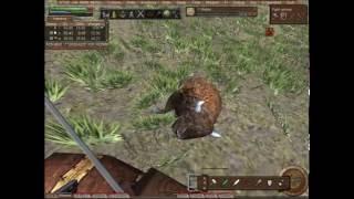 Wurm Online Killing Stuff