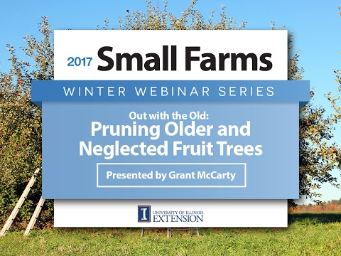 Pruning Old and Neglected Apple Trees - Grant McCarty - Univ
